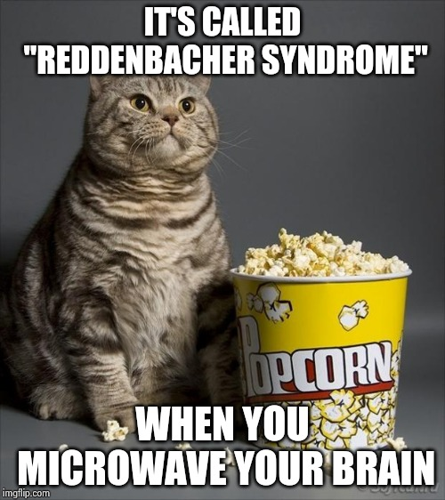 "If it's fun it's probably not good for you | IT'S CALLED ""REDDENBACHER SYNDROME"" WHEN YOU MICROWAVE YOUR BRAIN 