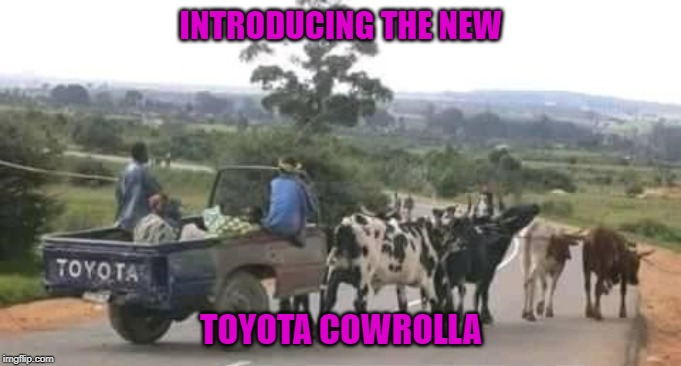 Whatever gets you from point A to point B right? | INTRODUCING THE NEW TOYOTA COWROLLA | image tagged in toyota cowrolla,memes,toyota,funny,cows,point a to point b | made w/ Imgflip meme maker
