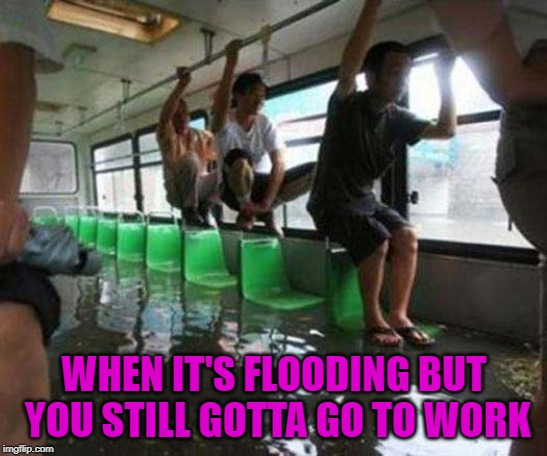 Those bills don't pay themselves! | WHEN IT'S FLOODING BUT YOU STILL GOTTA GO TO WORK | image tagged in flooded bus,memes,flooding,funny,gotta go to work,dedication | made w/ Imgflip meme maker