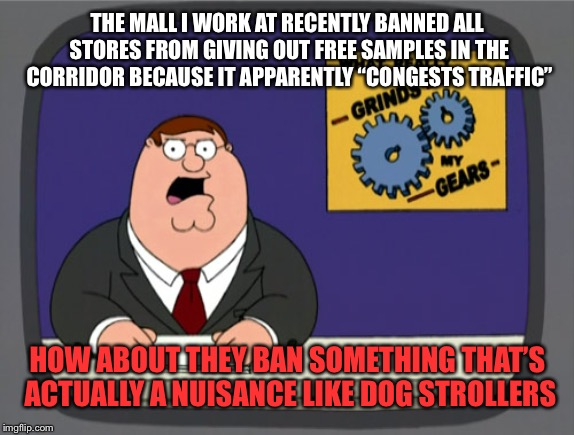 "No, it's not your ""service animal"" 