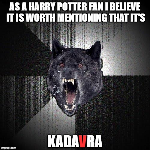 AS A HARRY POTTER FAN I BELIEVE IT IS WORTH MENTIONING THAT IT'S KADAVRA V | image tagged in memes,insanity wolf | made w/ Imgflip meme maker