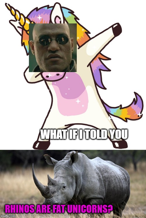 The Truth Behold | WHAT IF I TOLD YOU RHINOS ARE FAT UNICORNS? | image tagged in rhino,unicorn dab | made w/ Imgflip meme maker