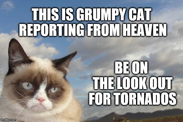 Grumpy Cat Sky |  THIS IS GRUMPY CAT REPORTING FROM HEAVEN; BE ON THE LOOK OUT FOR TORNADOS | image tagged in memes,grumpy cat sky,grumpy cat | made w/ Imgflip meme maker