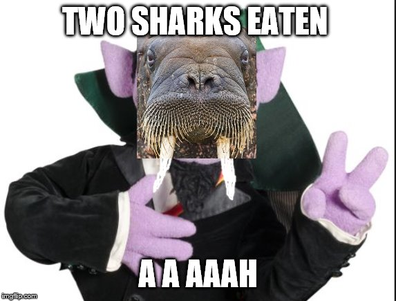 Sesame Street Count | TWO SHARKS EATEN A A AAAH | image tagged in sesame street count | made w/ Imgflip meme maker