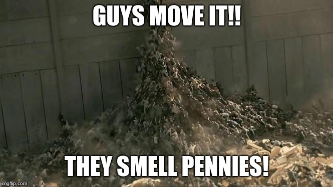 World War Z Meme | GUYS MOVE IT!! THEY SMELL PENNIES! | image tagged in world war z meme | made w/ Imgflip meme maker