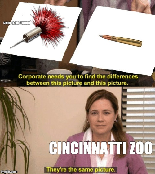 Office Same Picture | @NICOLASGOITIANDIA CINCINNATTI ZOO | image tagged in office same picture | made w/ Imgflip meme maker