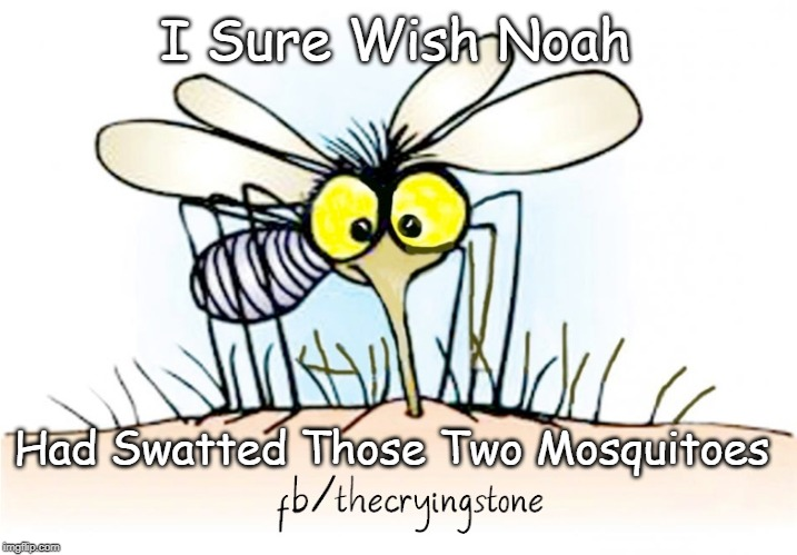 I Sure Wish Noah Had Swatted Those Two Mosquitoes | image tagged in mosquito,noah | made w/ Imgflip meme maker