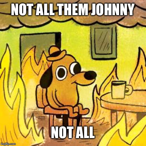 NOT ALL THEM JOHNNY NOT ALL | image tagged in dog in burning house | made w/ Imgflip meme maker