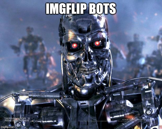Terminator Robot T-800 | IMGFLIP BOTS | image tagged in terminator robot t-800 | made w/ Imgflip meme maker