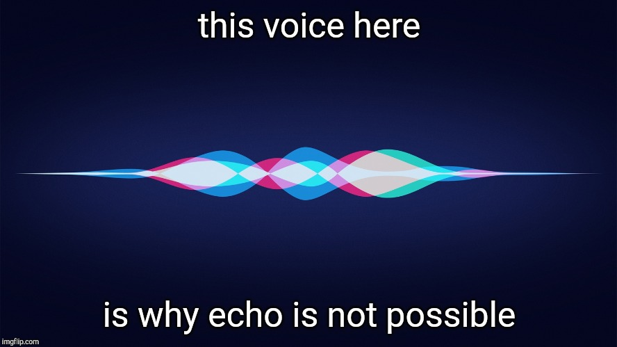 siri | this voice here is why echo is not possible | image tagged in siri | made w/ Imgflip meme maker