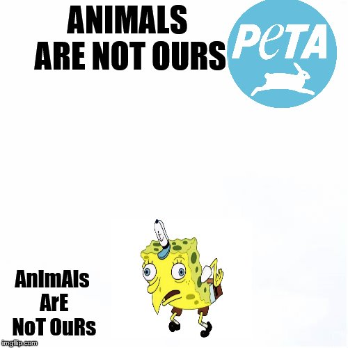 ANIMALS ARE NOT OURS AnImAls ArE NoT OuRs | image tagged in moking spongbob,peta | made w/ Imgflip meme maker