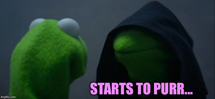 Evil Kermit Meme | STARTS TO PURR... | image tagged in memes,evil kermit | made w/ Imgflip meme maker