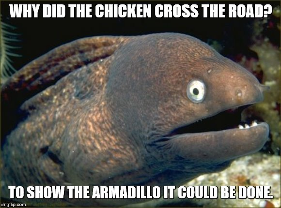 Bad Joke Eel | WHY DID THE CHICKEN CROSS THE ROAD? TO SHOW THE ARMADILLO IT COULD BE DONE. | image tagged in memes,bad joke eel,why did the chicken cross the road,chicken,why did i make this,fishing for upvotes | made w/ Imgflip meme maker