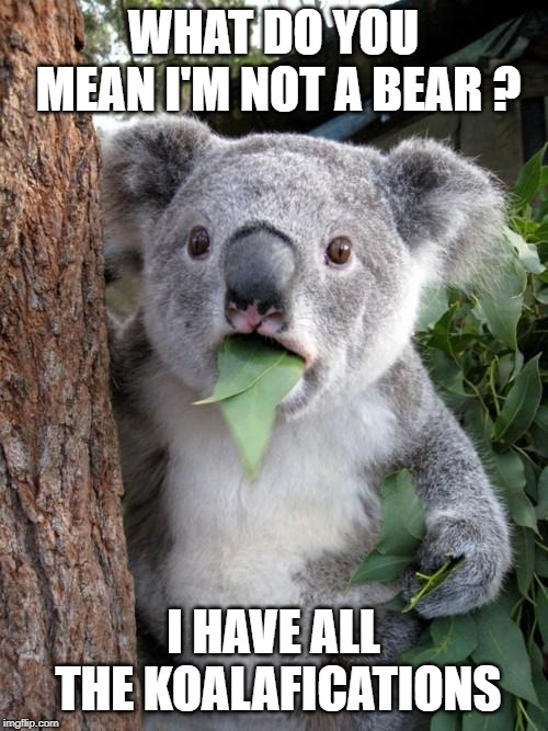 Surprised Koala |  WHAT DO YOU MEAN I'M NOT A BEAR ? I HAVE ALL THE KOALAFICATIONS | image tagged in memes,surprised koala | made w/ Imgflip meme maker