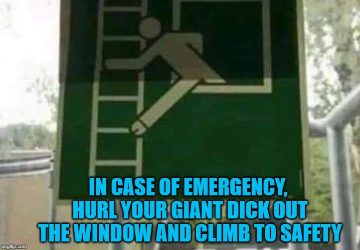 Well that's one way to do it! | IN CASE OF EMERGENCY, HURL YOUR GIANT DICK OUT THE WINDOW AND CLIMB TO SAFETY | image tagged in funny signs,memes,in case of emergency,funny,signs,safe yourself | made w/ Imgflip meme maker
