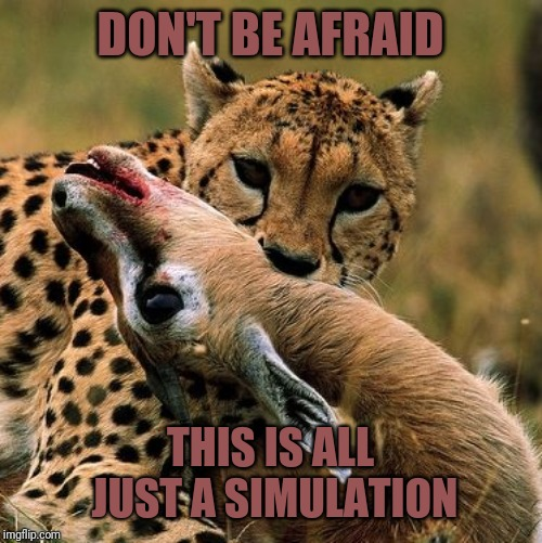 Don't be afraid. This is all just a simulation. | DON'T BE AFRAID THIS IS ALL JUST A SIMULATION | image tagged in cheetah,simulation,matrix,kill,death,afterlife | made w/ Imgflip meme maker
