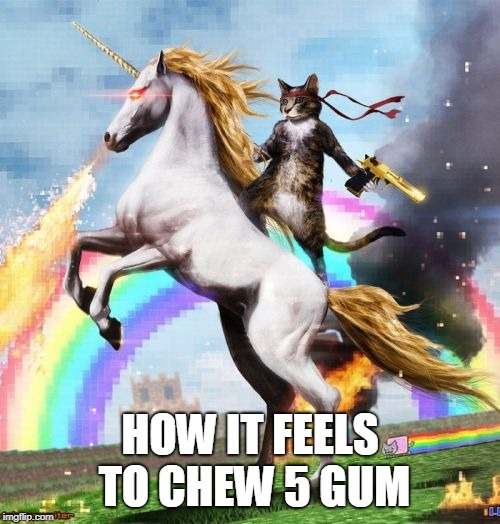 Welcome To The Internets | HOW IT FEELS TO CHEW 5 GUM | image tagged in memes,welcome to the internets | made w/ Imgflip meme maker