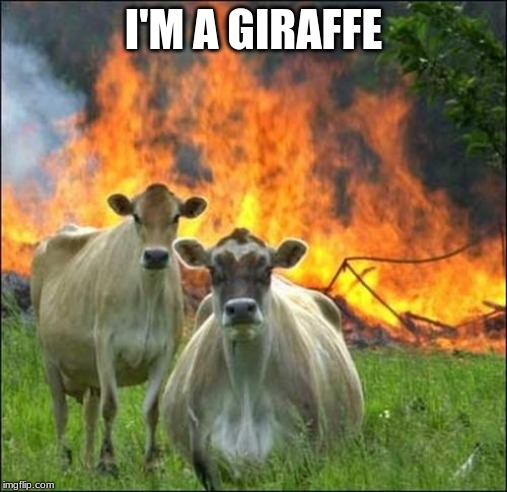 Evil Cows | I'M A GIRAFFE | image tagged in memes,evil cows | made w/ Imgflip meme maker