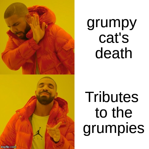 grumpy cat's death Tributes to the grumpies | image tagged in memes,drake hotline bling | made w/ Imgflip meme maker