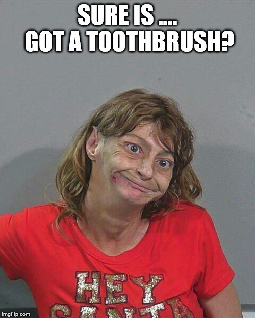 Meth Head Xmas | SURE IS .... GOT A TOOTHBRUSH? | image tagged in meth head xmas | made w/ Imgflip meme maker
