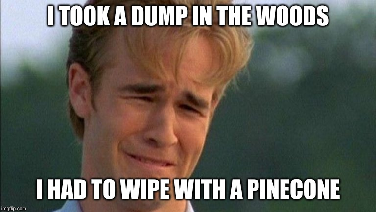 crying dawson | I TOOK A DUMP IN THE WOODS I HAD TO WIPE WITH A PINECONE | image tagged in crying dawson | made w/ Imgflip meme maker