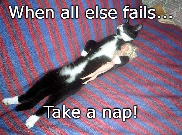 When all else fails... Take a nap! | image tagged in nap,stressed out,funny meme,catnap | made w/ Imgflip meme maker