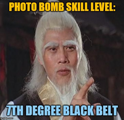 Wise Kung Fu Master | PHOTO BOMB SKILL LEVEL: 7TH DEGREE BLACK BELT | image tagged in wise kung fu master | made w/ Imgflip meme maker