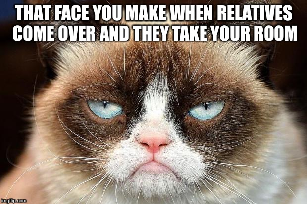 Grumpy Cat Not Amused |  THAT FACE YOU MAKE WHEN RELATIVES COME OVER AND THEY TAKE YOUR ROOM | image tagged in memes,grumpy cat not amused,grumpy cat | made w/ Imgflip meme maker
