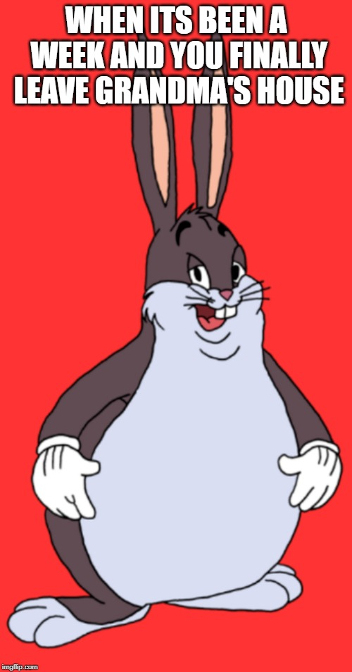 Big Chungus | WHEN ITS BEEN A WEEK AND YOU FINALLY LEAVE GRANDMA'S HOUSE | image tagged in big chungus | made w/ Imgflip meme maker