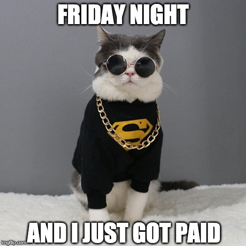 party time |  FRIDAY NIGHT; AND I JUST GOT PAID | image tagged in friday,cool,rock and roll | made w/ Imgflip meme maker