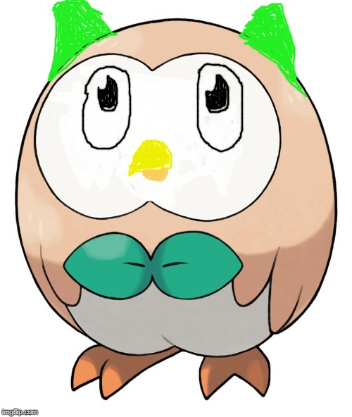 Duolingo bird but its a Rowlet | image tagged in rowlet,duolingo,duolingo bird,pokemon,drawing,help me | made w/ Imgflip meme maker