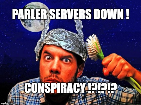 Why U Hate Laura Loomer So Much ?!?! | PARLER SERVERS DOWN ! CONSPIRACY !?!?!? | image tagged in twitter,facebook,banned | made w/ Imgflip meme maker