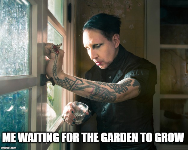 Waiting for the garden to grow | ME WAITING FOR THE GARDEN TO GROW | image tagged in marilyn manson,gardening | made w/ Imgflip meme maker