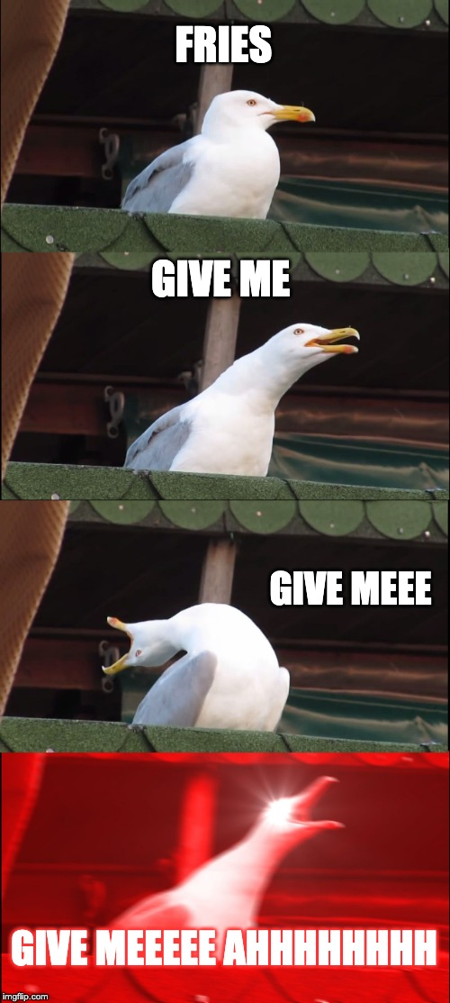 Inhaling Seagull Meme | FRIES GIVE ME GIVE MEEE GIVE MEEEEE AHHHHHHHH | image tagged in memes,inhaling seagull | made w/ Imgflip meme maker