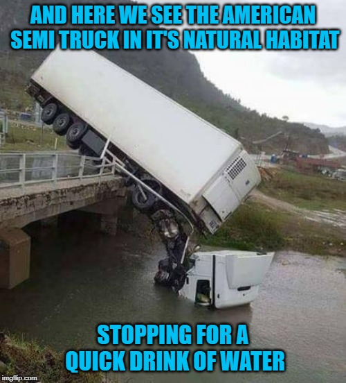 Driving all those miles you don't want to overheat!!! | AND HERE WE SEE THE AMERICAN SEMI TRUCK IN IT'S NATURAL HABITAT STOPPING FOR A QUICK DRINK OF WATER | image tagged in semi truck,memes,drink of water,funny,overheating,oops | made w/ Imgflip meme maker