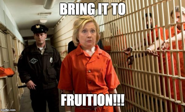 Hillary Jail | BRING IT TO FRUITION!!! | image tagged in hillary jail | made w/ Imgflip meme maker