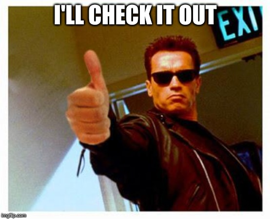 terminator thumbs up | I'LL CHECK IT OUT | image tagged in terminator thumbs up | made w/ Imgflip meme maker