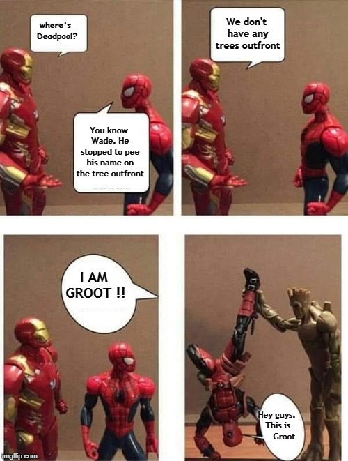 I MA GROOT!! |  We don't have any trees outfront; where's Deadpool? You know Wade. He stopped to pee his name on the tree outfront; I AM GROOT !! Hey guys. This is      Groot | image tagged in groot,memes,spiderman,iron man,i am groot,memes about memes | made w/ Imgflip meme maker