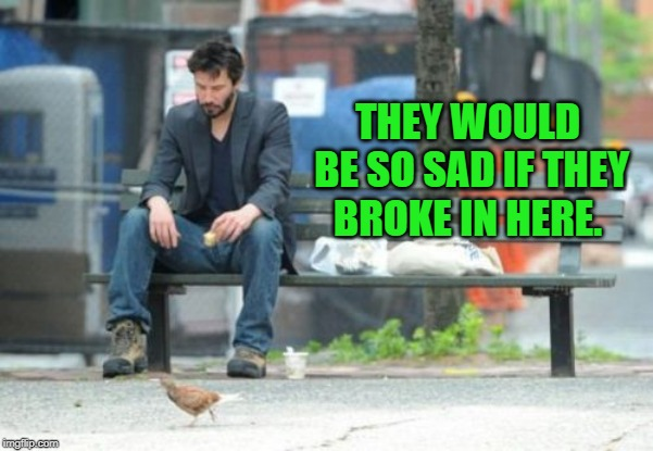Sad Keanu Meme | THEY WOULD BE SO SAD IF THEY BROKE IN HERE. | image tagged in memes,sad keanu | made w/ Imgflip meme maker