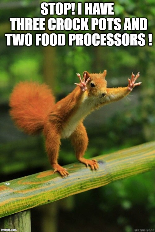 Wait a Minute Squirrel | STOP! I HAVE THREE CROCK POTS AND TWO FOOD PROCESSORS ! | image tagged in wait a minute squirrel | made w/ Imgflip meme maker