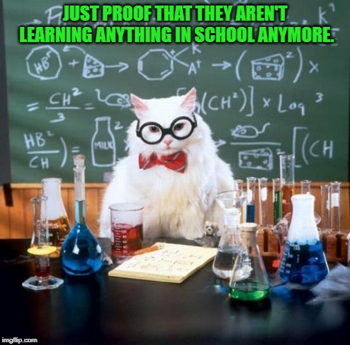 Chemistry Cat Meme | JUST PROOF THAT THEY AREN'T LEARNING ANYTHING IN SCHOOL ANYMORE. | image tagged in memes,chemistry cat | made w/ Imgflip meme maker