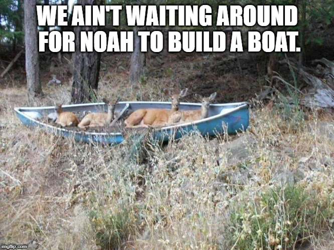 Deer Fun | WE AIN'T WAITING AROUND FOR NOAH TO BUILD A BOAT. | image tagged in deer,whitetail deer,hunting,canoe | made w/ Imgflip meme maker