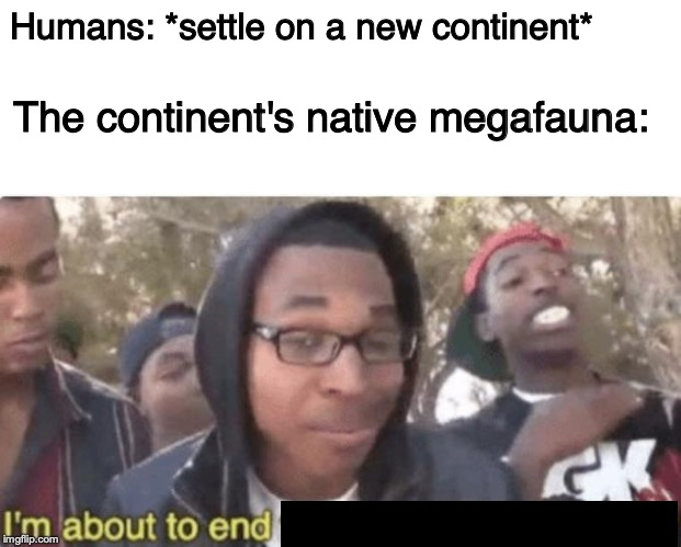 Time for a new mass extinction | Humans: *settle on a new continent* The continent's native megafauna: | image tagged in i'm about to end this mans whole career,humanity,ice age,extinction,animals,memes | made w/ Imgflip meme maker