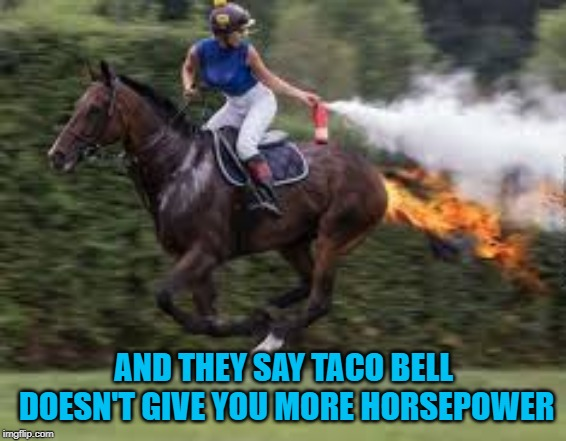 It'll give you more horsepower if you can handle the flamin' anus!!! |  AND THEY SAY TACO BELL DOESN'T GIVE YOU MORE HORSEPOWER | image tagged in horsepower,memes,taco bell,funny,flamin' anus,the turkey squirts | made w/ Imgflip meme maker