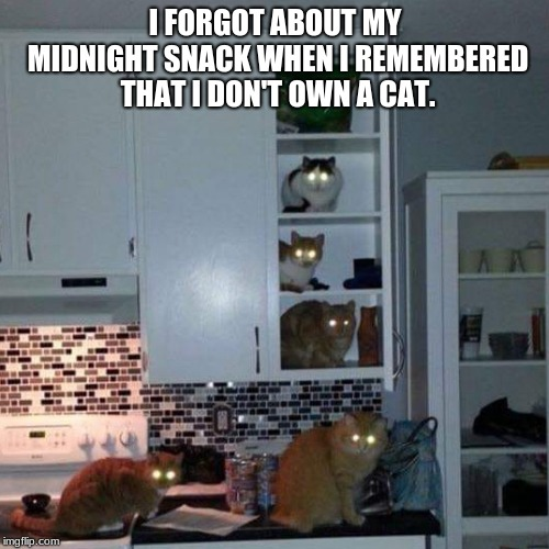 Bumps in the night could be a clue | I FORGOT ABOUT MY MIDNIGHT SNACK WHEN I REMEMBERED THAT I DON'T OWN A CAT. | image tagged in creepy cats,midnight cat attack,get dogs,cat army assembled,kitchen nightmares | made w/ Imgflip meme maker