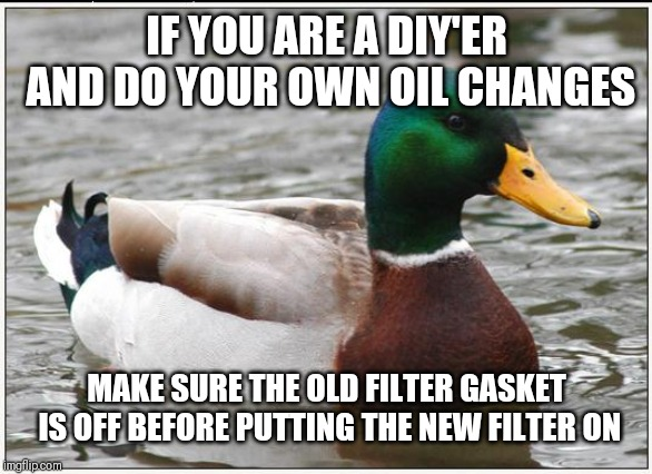 Actual Advice Mallard | IF YOU ARE A DIY'ER AND DO YOUR OWN OIL CHANGES MAKE SURE THE OLD FILTER GASKET IS OFF BEFORE PUTTING THE NEW FILTER ON | image tagged in memes,actual advice mallard,AdviceAnimals | made w/ Imgflip meme maker