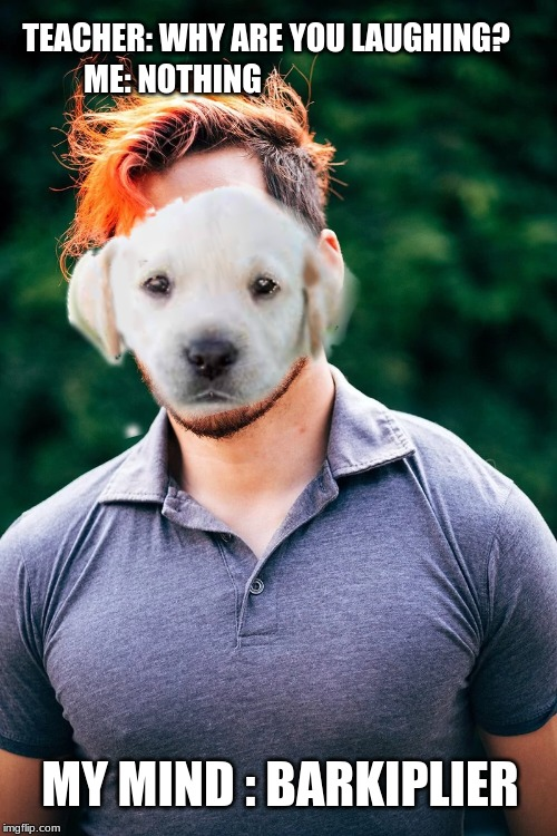 TEACHER: WHY ARE YOU LAUGHING? ME: NOTHING MY MIND : BARKIPLIER | image tagged in dog,dogs,markiplier,teacher,okay,weird | made w/ Imgflip meme maker
