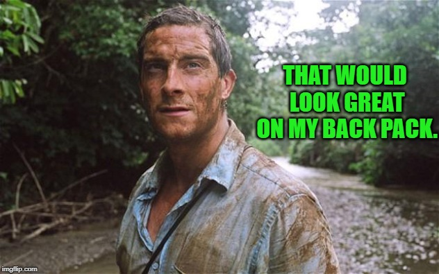 Bear Grylls | THAT WOULD LOOK GREAT ON MY BACK PACK. | image tagged in bear grylls | made w/ Imgflip meme maker