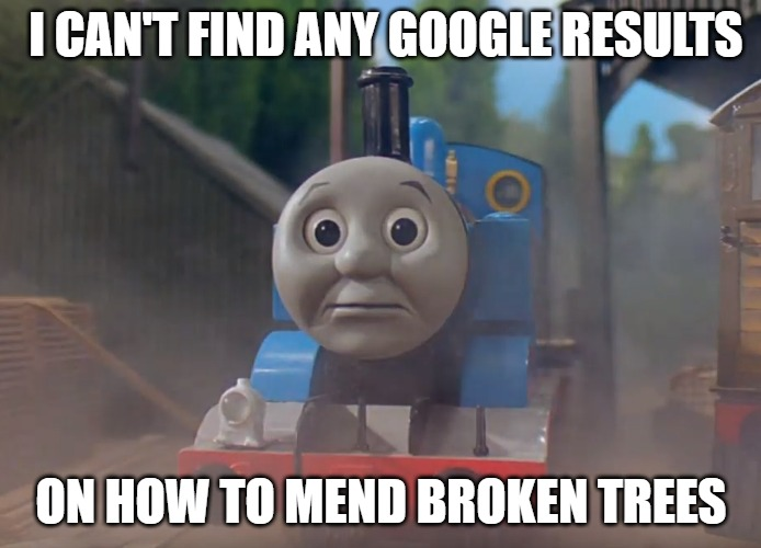 Broken Trees | I CAN'T FIND ANY GOOGLE RESULTS ON HOW TO MEND BROKEN TREES | image tagged in thomas the tank engine,charity | made w/ Imgflip meme maker
