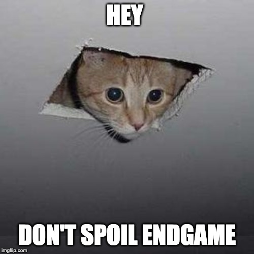 Ceiling Cat | HEY DON'T SPOIL ENDGAME | image tagged in memes,ceiling cat | made w/ Imgflip meme maker